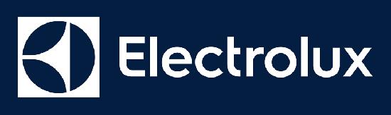 Cs, CAREservice ELECTROLUX-LOGO Ricambi Originali Electrolux Nichelino Accessori Ricambi  Electrolux